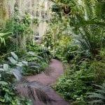 My Scottish Happy Place: The Royal Botanic Garden Edinburgh
