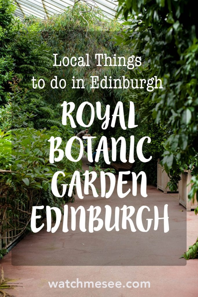 What to do when it's raining in Edinburgh and you've seen all the touristy biggies? Follow me to Inverleith and explore the Royal Botanic Garden Edinburgh!