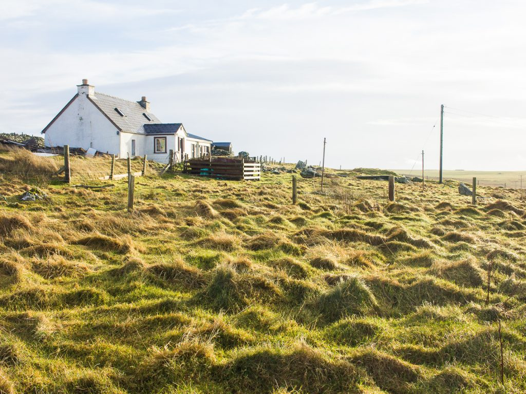 A white farm house on Shetland