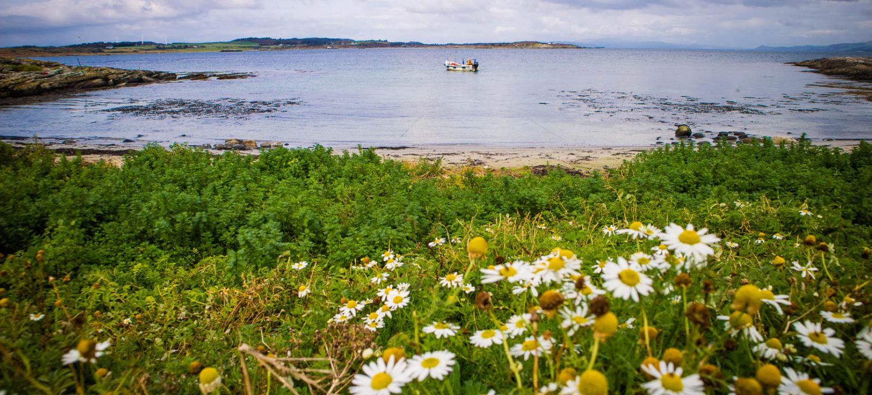 Cara Island Bay
