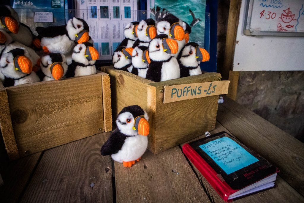 Stuffed puffins for sale on Handa Island