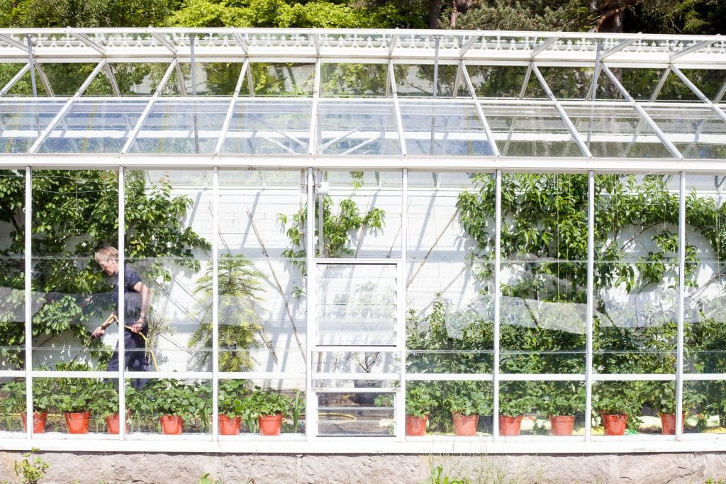 Glasshouse in the castle gardens at Balmoral Castle.