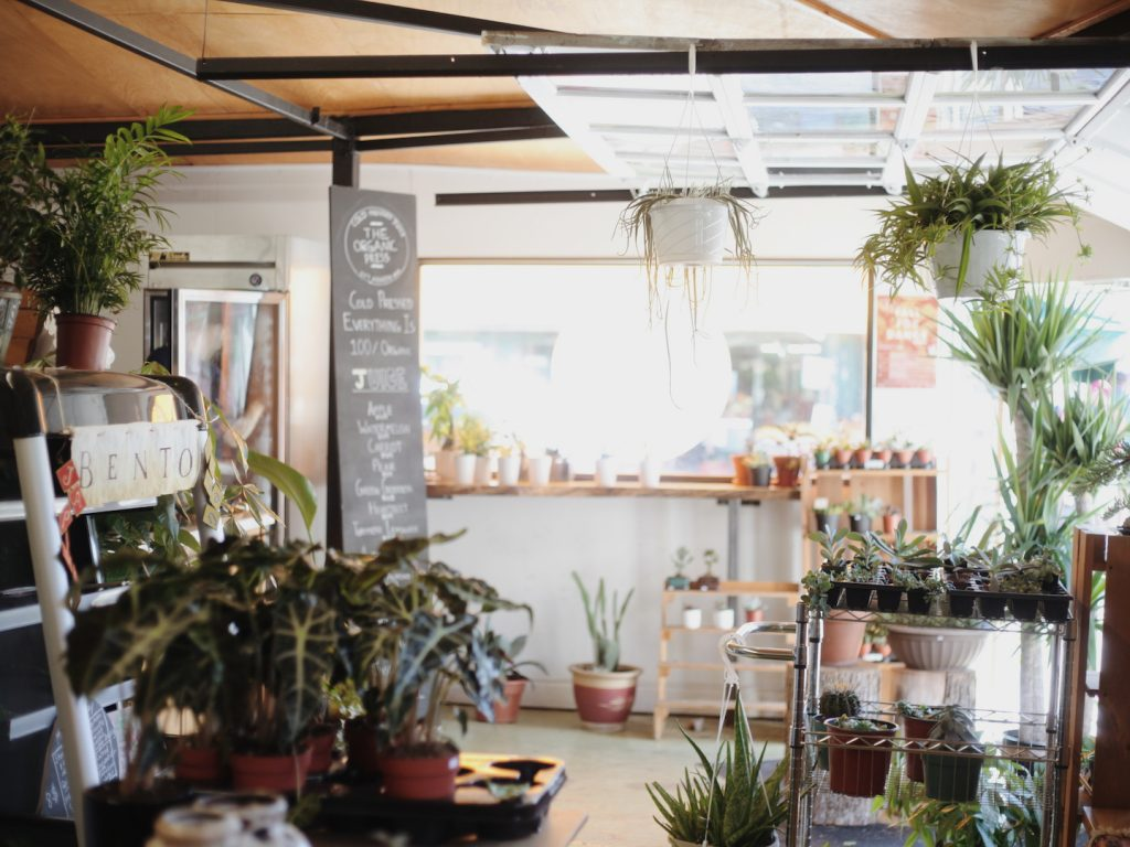 A juice bar and plant shop at Kensington market in Toronto.