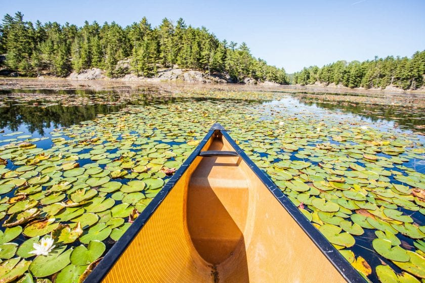 Canoeing in Killarney Provincial Park