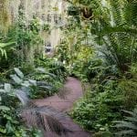 My Scottish Happy Place: The Royal Botanic Garden Edinburgh